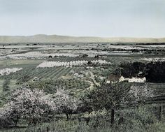Before Buck was kidnapped, he lived in the Santa Clara valley with Judge Miller. San Jose California, California City, California History, Central California, Ranch, Santa Clara County, San Francisco Bay, Local History, Old Pictures