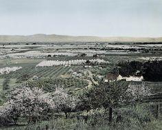 Overlooking Santa Clara Valley, c.1890