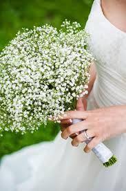 brudeslør blomst