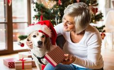 10 Holiday Dog Toys That Also Help Animals In Need   Care2 Healthy Living