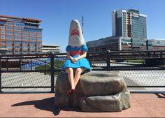 Shark Girl Bench, Canalside, New York