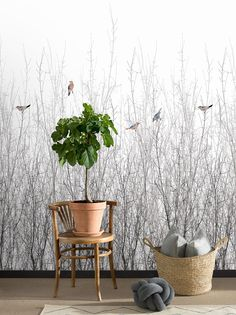 Sparrow by Engblad & Co - White - Mural : Wallpaper Direct Wallpaper Display, Hallway Wallpaper, Bird Wallpaper, White Wallpaper, Animal Wallpaper, Nature Wallpaper, Sparrow Bird, Watercolor Bird, Wall Murals