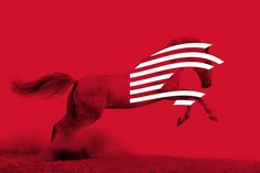 Our customer's philosophy on the immediate and effective coverage of its commercial delivery network inspired us on the choice of the theme. The choice of a galloping horse's image highlights the speed and the reliability of the company, while the linear presentation intensifies the focus on these thematic axes. Check the whole project at http://artware.gr/portfolio/mantzaropoulos/