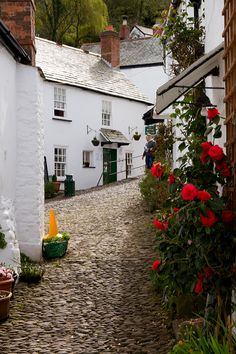 A beautiful cobbled street in Clovelly  Devon. Our tips for 25 fun things to do in England: http://www.europealacarte.co.uk/blog/2011/08/18/what-to-do-england/