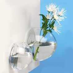 Wall vase from Snow Home