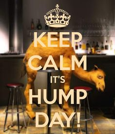 KEEP CALM IT'S HUMP DAY! by Moi