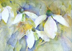 Cynthie Roudebush - Snowdrops