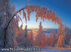 Enjoy your day!  #deals #coupons #discounts #shop and #save @trademydeals.ca