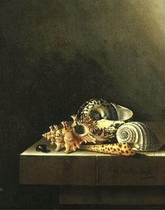 Adriaen Coorte Still Life of Shells on a Marble Ledge 1698