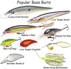 Bass Fishing Available In Various Designs And Specifications For Your Selection Sports Mem, Cards & Fan Shop Auction 0039 Rapala Husky Jerk Hj08