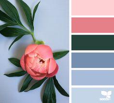 { flora hues } image via: @diana_lovring #seedscolor #color #colorpalette #color #palette #pallet #colour #colourpalette #design #seeds #designseeds