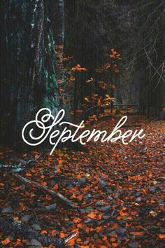 Ah, September. The month in which the autumnal season begins!