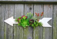 Faux Succulent Wall Hanging on Wooden Arrow Succulent Wall, Succulent Arrangements, Wooden Arrows, Faux Succulents, Air Plants, Etsy Seller, Vintage, Succulents, Succulent Wall Diy