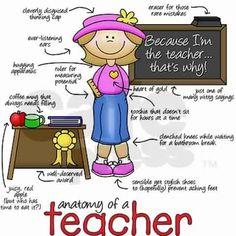 Anatomy of a Teacher.