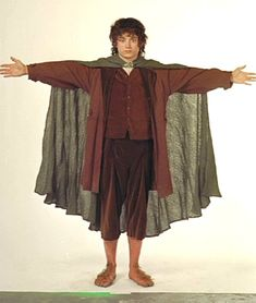 Frodo Costume Ideas images