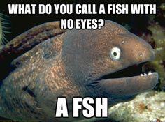 Another bad fish joke :)