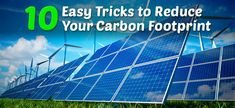 10 Easy Tricks to Reduce Your Carbon Footprint   You live a healthy, balanced life, but do you live a green one? As it becomes clearer that the environment is often sacrificed for our needs, you might want to shrink your personal effect on the world around you. Here are ten easy tricks that will help you do so. You might be surprised to see just how simple reducing your carbon footprint can be.   1. Alternatives to driving – When possible, walk or ride your bike in order to avoid carbon…