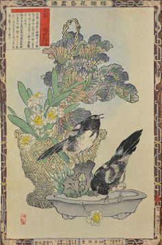 Bairei (1844-1895) - Habotan and Kasasagi, 1883