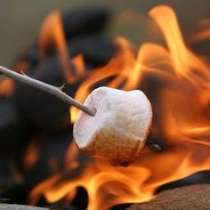 Campfires and roasting Marshmellows for S'mores...who's in?