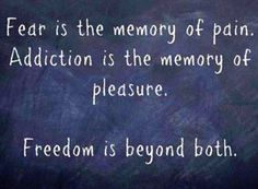 Fear is the memory of pain. Addiction is the memory of pleasure. Freedom is beyond both! #sboer