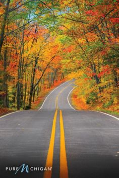 Whether it's for a weekend or a week, discover unlimited adventure in Pure Michigan. Experience a remarkable fall road trip complete with hiking, biking and more through some of America's most gorgeous landscapes. Plan your Pure Michigan journey today.