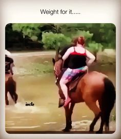 Applauding the horse - Horses Funny - Funny Horse Meme - - The post Applauding the horse appeared first on Gag Dad. Funny Horse Videos, Funny Horse Memes, Clean Funny Memes, Funny Horses, Funny Video Memes, Funny Animal Memes, Animal Jokes, Funny Fails, Friendship Memes Funny