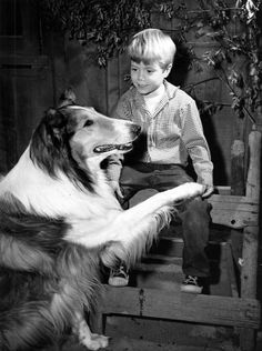 Lassie in '57, TV - Loved the dog.  The dog was the smartest one on the show.