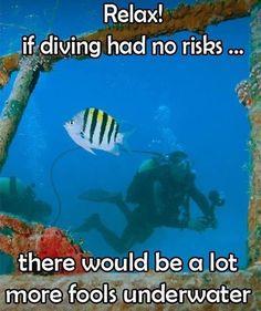 Very true!  Let's keep #Diving!  #ScubaMedicFL #Dive #PADI #UnderwaterPhotography #DiversAlertNetwork #Independent #ScubaInstructor #DiveJax #DiveStAug #DiveStAugustine #GetScubaCertified #OpenWater #AdvancedOpenWater #Nitrox #StAugustine #NREMT #Paramedic #Firefighter #DiscountScubaGear #ScubaTravel #VeteransScuba #FREEApp4iPhone #FREEApp4Android #CPRInstructor #DiveTravel (view on Instagram http://ift.tt/2hRezId)
