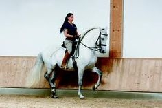 Anja Beran - queen of classical dressage