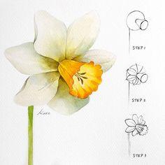 Simple Flower Drawing, Flower Drawing Tutorials, Simple Line Drawings, Flower Sketches, Watercolour Tutorials, Easy Drawings, Easy Sketches, Flower Drawings, Drawing Ideas