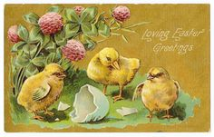 vintage easter cards | Vintage Easter Clip Art: Easter Postcard with Chicks and Duckling