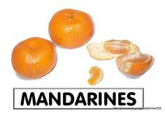 FRUITS I FRUITES DE TARDOR - brichi Monferrer - Álbumes web de Picasa