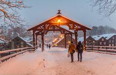 In That snowy day by Aziz Nasuti on 500px