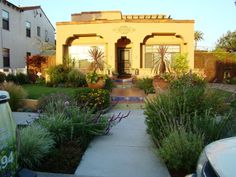 Front garden entry?   Spainish low water garden plants such as lavenders and salvias have a punch of color!