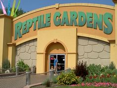 Reptile gardens south Dakota..... lots of reptiles to see and learn about and a great gift shop. With the money.... Kids loved it and so did me and my husband.