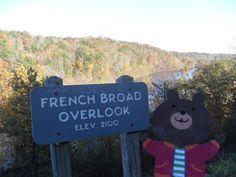Barney Bear in Asheville, North Carolina!