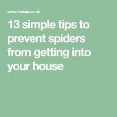 13 simple tips to prevent spiders from getting into your house Get Rid Of Spiders, Garden Bags, British Home, Feeling Lazy, Oranges And Lemons, Simple, Tips, House, Home