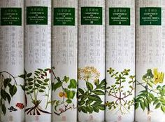 Compendium of Materia Medica Chinese treatise on herbal medicine Food Box Packaging, Tea Packaging, Packaging Design, Medicine Book, Chinese Medicine, Herbal Medicine, Chinese Herbs, Chinese Art, Chinese Style