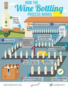 Have you ever wondered how #wines are bottled? Learn the 11 step process. #Infographic - http://www.drinkuproot.com/pages/the-wine-bottling-process