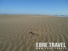 #ElTrabucador, in #LesTerresdeLEbre, more than sea and sand. At http://www.ebre.travel/ soon.  #ElTrabucador, a #LesTerresdeLEbre, més que mar i sorra. Properament a http://www.ebre.travel/   #ElTrabucador, en #LesTerresdeLEbre, mas que mar y arena. Próximamente en http://www.ebre.travel/