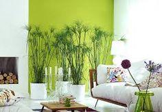 Green Decor