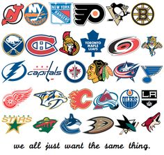 That's a part of what makes us all hockey fans.