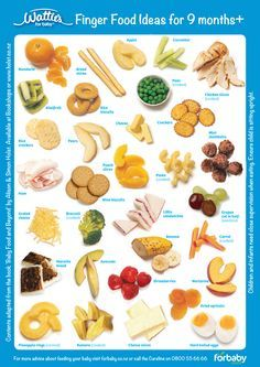 Finger Food Ideas for babies 9 months+ | Forbaby.co.nz