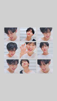 Seventeen Memes, Hoshi Seventeen, Carat Seventeen, Seventeen Wallpapers, Kpop, Mingyu, Boyfriend Material, Cute Wallpapers, Aesthetic Wallpapers