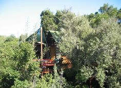 Treetop Eco-lodging Lodges, South Africa, Cabin, House Styles, Home Decor, Homemade Home Decor, Cottages, Cabins, Cottage