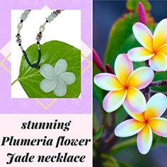 Plumeria Hand Carved Jade Necklace Amazon Com Etsy Wedding Jade Carving Hand Carved Jewelry