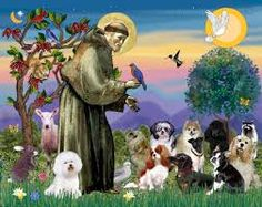 Image result for pictures of st francis of assisi with animals