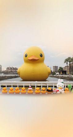 Rubber Ducks & Friends