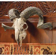 Design Toscano Corsican Ram Skull and Horns Wall Sculpture Faux Taxidermy Animal, 18 Inch, Polyresin, Full Color Moose Skull, Ram Skull, Deer Skulls, Animal Skulls, Skull Mask, Wall Sculptures, Lion Sculpture, Longhorn Cow, Bull Skulls