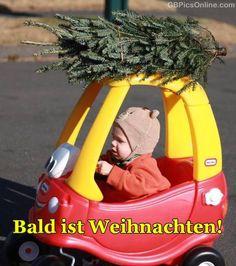 Bald Ist Weihnachten GB Pics